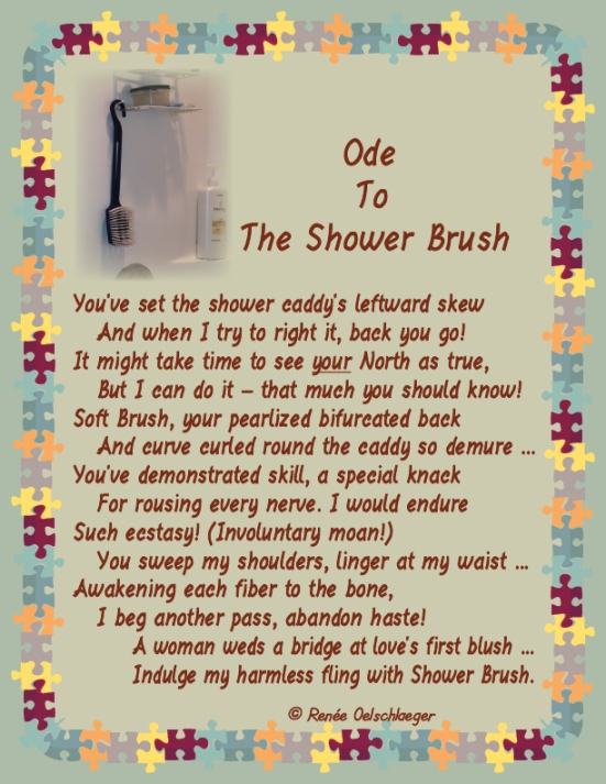 ShowerBrush