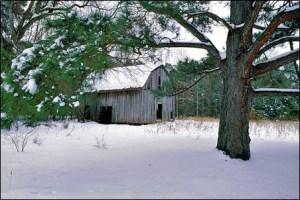 Winter_Wonderland_001_l