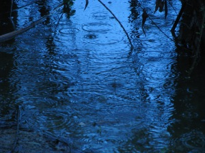 raindrops-the-lake-denise-davies_2164565