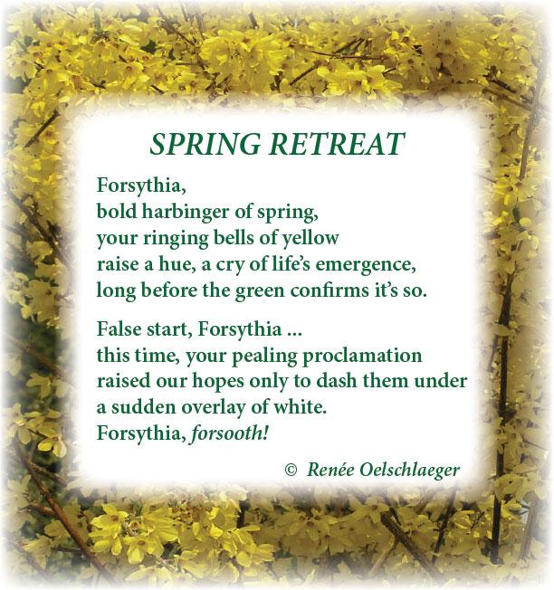 SpringRetreat